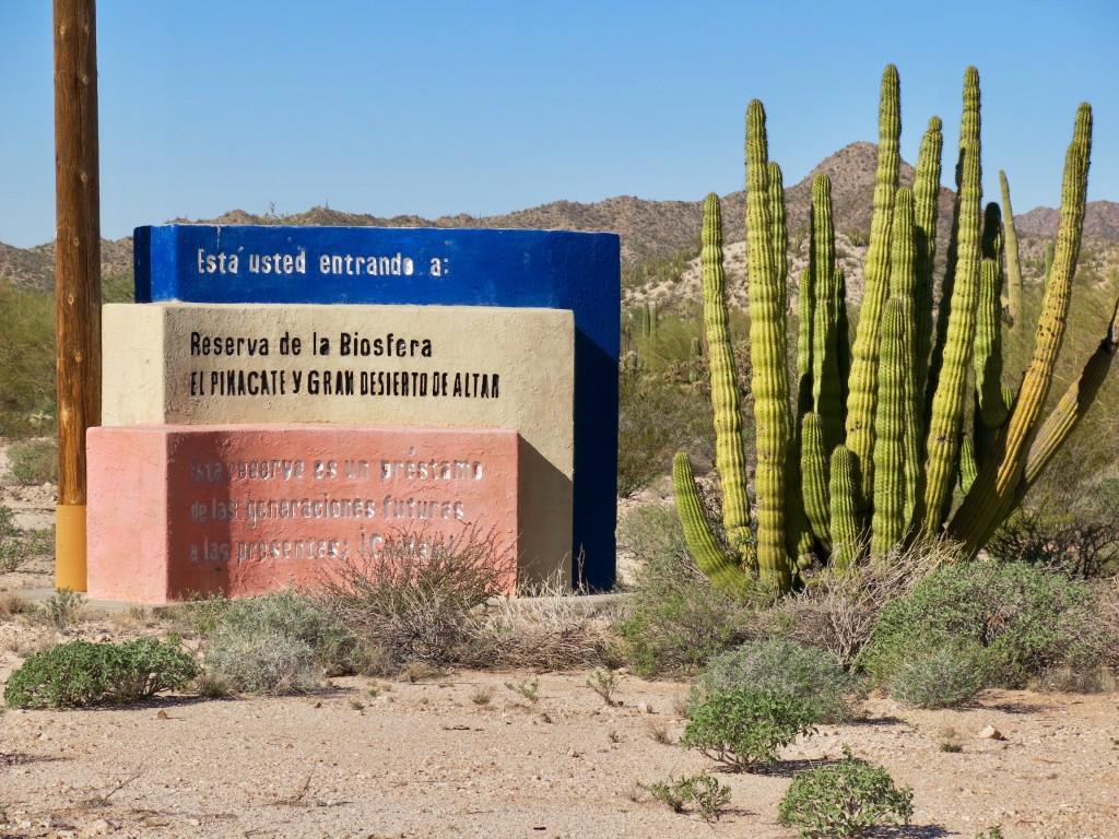 Toegang Reserva de la biosfera El Pinacata y Gran Desierto de Altar