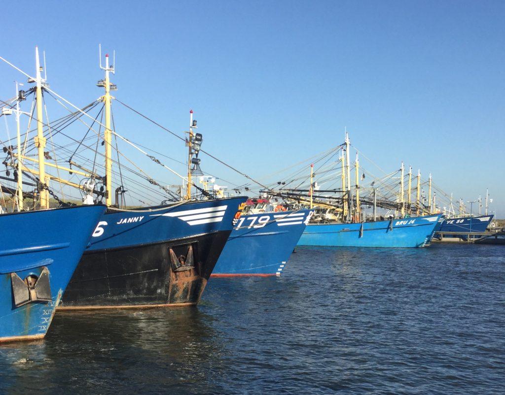 Zeeuwse mosselvissers in Den Oever