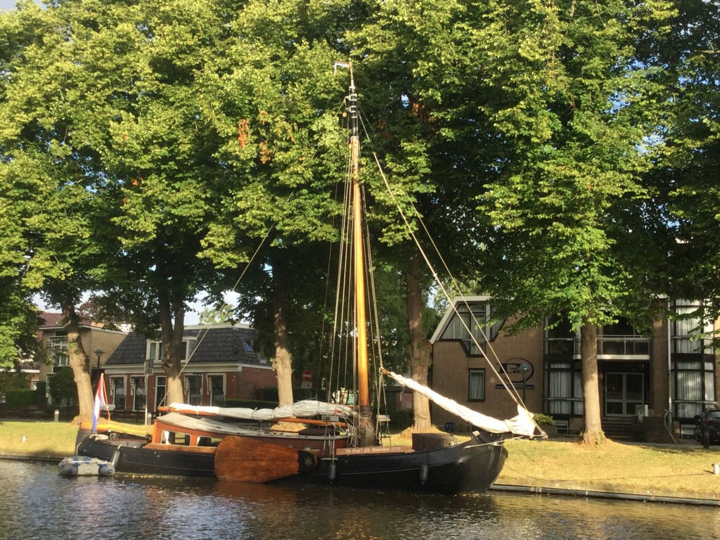 Met de mast in de bomen in Leeuwarden